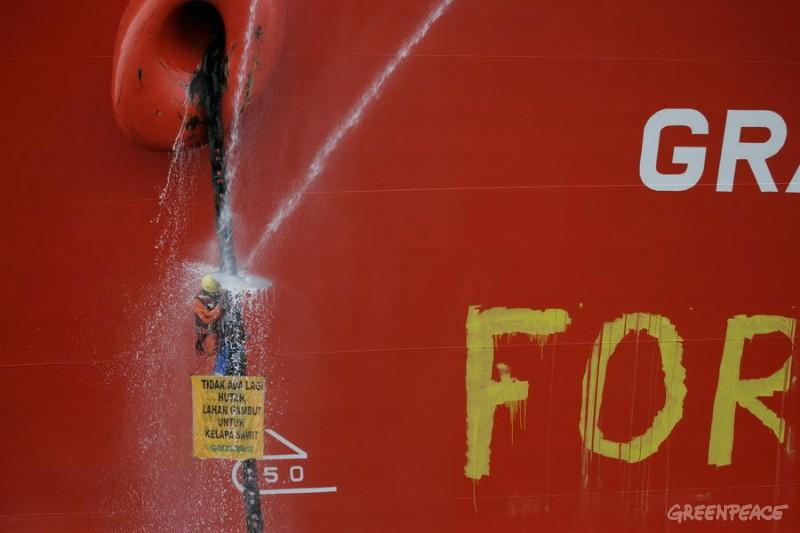 фото: greenpeace.org