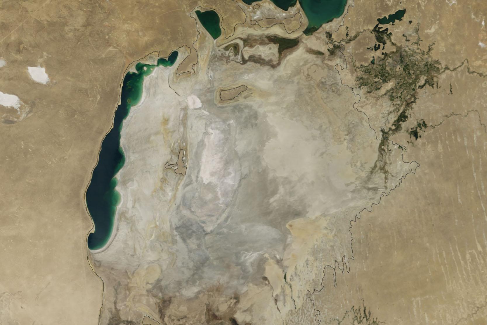 Артемия – единственный вид, выживший в сохранившейся части западного Арала