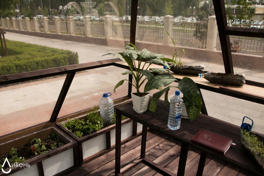 Ташкент Казахстан экология черви