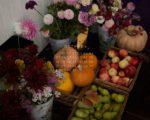 тыквы осень октябрь