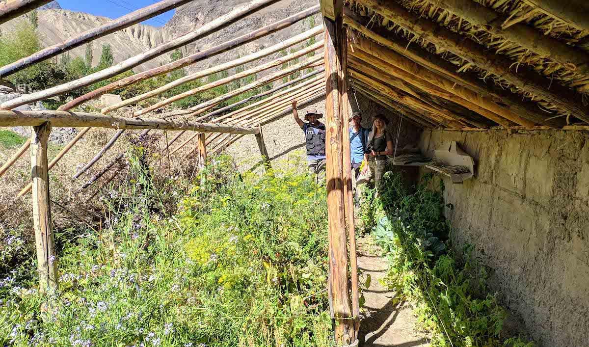 фермеры Таджикистана
