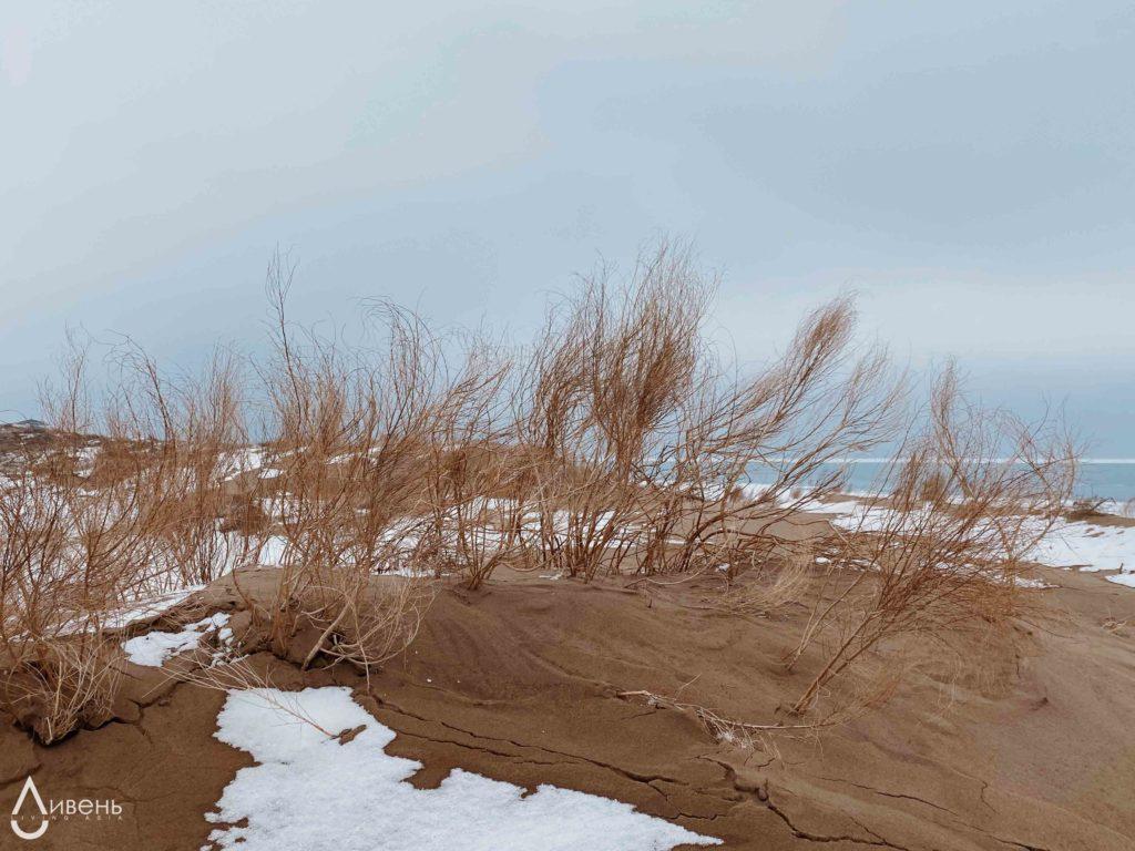 Зима на Капчагае.