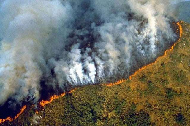 Пожар на Амазонке / Фото: Gazeddakibris.com