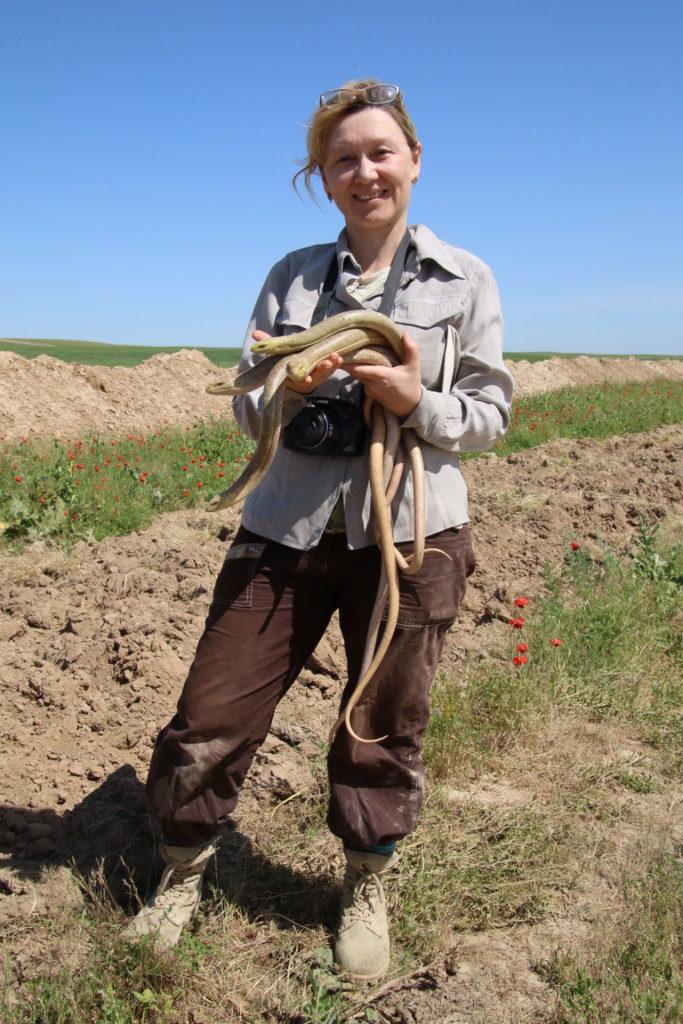 На дне глубокой траншеи обнаружено более 300 черепах, ящериц и змей