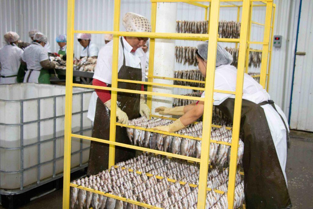 Рыбозавод в Аральске