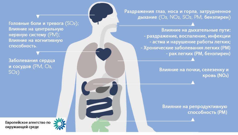 влияние качества воздуха на человека